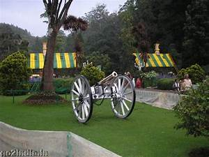 Ooty Government Botanical garden