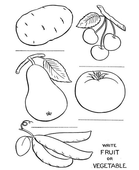fruits  vegetables   fruits  vegetables