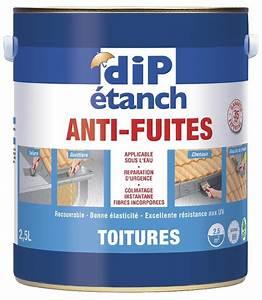 Dip Etanche Toiture : dip etanche anti fuite rev tements modernes du toit ~ Melissatoandfro.com Idées de Décoration