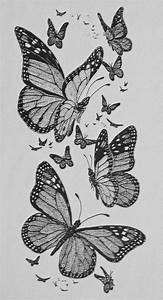 Drawing: Monarch Butterflies | A pen & ink drawing done ...