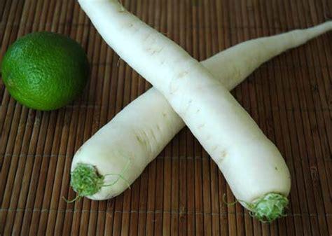 cuisiner des navets blancs le radis japonais daïkon le radis blanc ou radis chinois