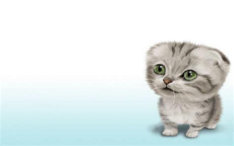 le meilleur ordinateur de bureau fonds d 39 écran gratuits de chats et de chatons animaux
