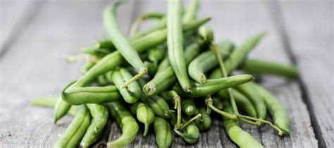 cuisiner haricot vert cuisiner des haricots verts frais 28 images c 244 tes