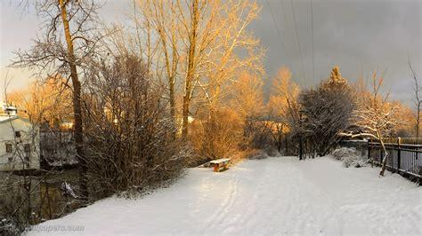 foto de Coucher de soleil d'hiver éclairant le parc fonds d'écran