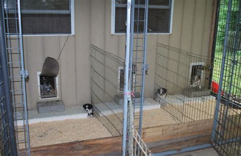 whelping rooms google search welping room pinterest google search  dog