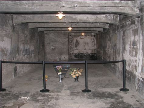 chambre a gaz execution holocaust quot scholar quot debunks himself