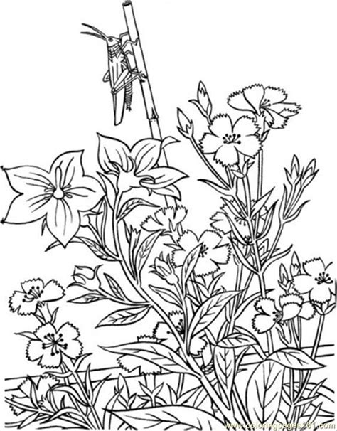 flower garden coloring pages for toddlers coloring pages