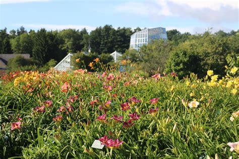 Japanischer Garten Tallinn by Baltikum