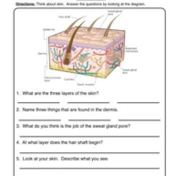 printable addition and subtraction worksheets skin worksheet 1
