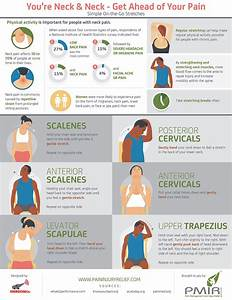 Stretches To Deal With Neck Pain  Infographic