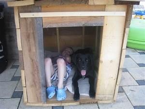 Niche D Intérieur Pour Chien : barri re pour niche de mon chien ~ Dallasstarsshop.com Idées de Décoration