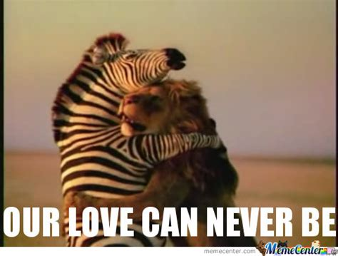 Funny Memes On Love - love memes funny image memes at relatably com