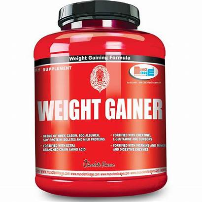 Weight Gainer Supplement Muscle Gainers