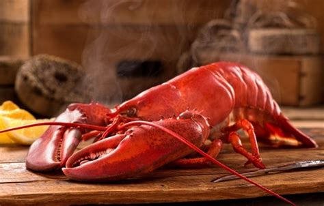 how to cook a lobster 3 simple ways to cook lobster at home the manual the manual