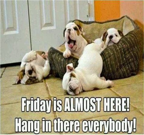 Almost Friday Meme - almost friday quotes hang in there it s almost friday hillllarious funny pinterest