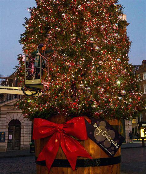 covent garden s christmas tree london s christmas lights