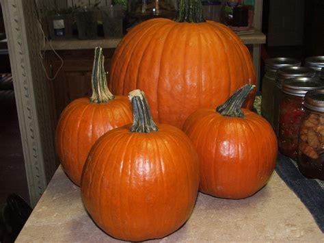 canning granny canning pumpkin