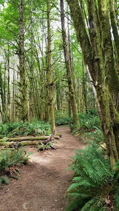 Alltrails Kiln Lime Trail Washington