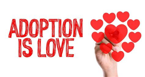 Adoption Agencies Offer A Viable Alternative For The. Best College Website Designs. How To Advertise Effectively. The Masters Restaurant List Of Target Markets. Pest Control Bergen County Nj. Life Isn T Fair Quotes Task Manager Windows 7. Carpet Cleaning Florida Bankruptcy Laws In Nc. Accidental Death Lawyers Get Rid Of Body Hair. Personality Disorder Help Universities In Mi