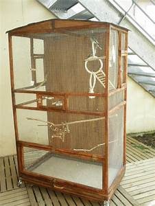 Fabrication D Une Voliere Exterieur : cr ation d 39 une cage ext rieure de a z ~ Premium-room.com Idées de Décoration