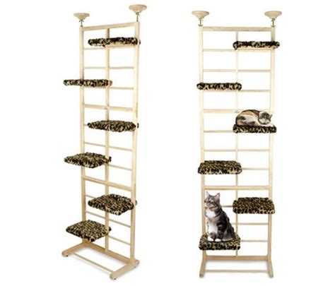 cat climber towers and sky on pinterest