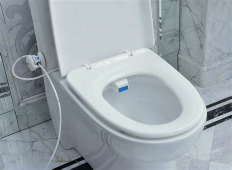 Toilet Seat Bidet Luxurious And Hygienic Eco Friendly And