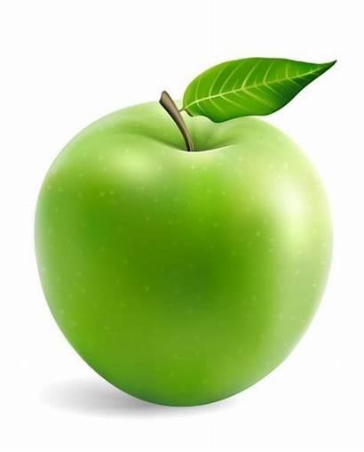 Apple Vector Illustration Apples Material Eps Illustrations