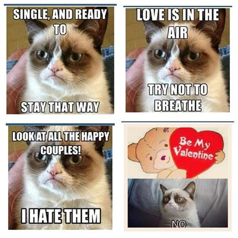 Anti Valentines Day Memes - would ve made funny anti valentines day cards if you ask me grumpy cat pinterest cards