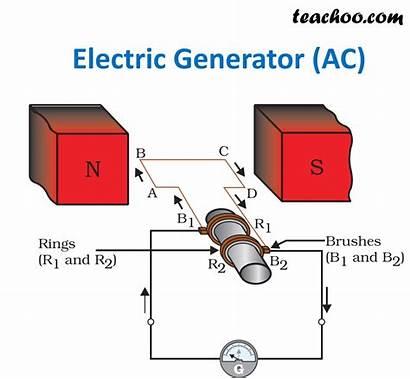 Generator Electric Principle Diagram Ncert Working Explain