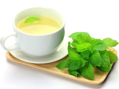 alimentazione intestino irritabile intestino irritabile rimedi naturali l efficacia della menta
