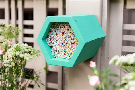How to Make a DIY Mason Bee Beehive Mason bee hive