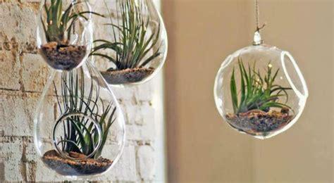 acheter une cuisine ikea diy 5 idées créatives pour un jardin d 39 intérieur bio à