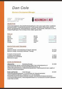 Resume format 2017 16 free to download word templates for Different resume formats