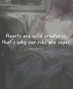 hearts are wild creatures   Tumblr
