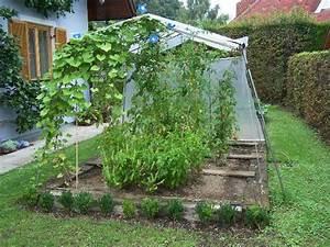 Tomaten Regenschutz Selber Bauen : tomatenhaus selber bauen wie habt ihr das gemacht mein sch ner garten forum ~ Frokenaadalensverden.com Haus und Dekorationen