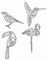 Dessin Coloriage Oiseaux Origami Oiseau Polygonal Divers Imprimer Geometrische Drawing Artherapie Tiere Polygon Animaux Geometric Facile Animal Kunst Tableau Tekening sketch template