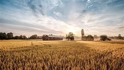 Nature Sky Farm Barley Fields Rural Area