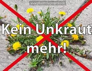 Unkraut In Fugen Entfernen : pflasterfugenprofis die pflasterfugenprofis ~ Lizthompson.info Haus und Dekorationen