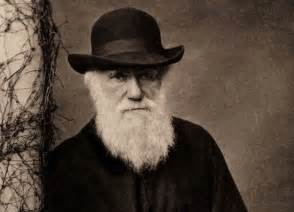 What If Darwin Had Never Existed?  Popular Science