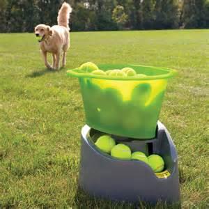 kitchen furniture design software godoggo remote fetch automatic tennis launcher for