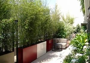 Pflanzkübel Groß Draußen : sichtschutz f r den balkon mit bambuspflanzen und schilfrohrmatten ~ Watch28wear.com Haus und Dekorationen