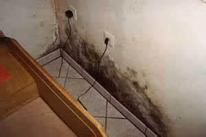 Feuchtigkeit Im Keller Beseitigen : schimmel im keller entfernen ursache folgen und ~ Watch28wear.com Haus und Dekorationen