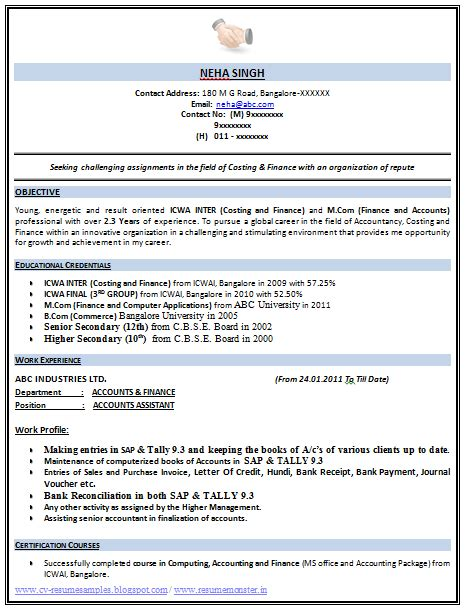 template   excellent icwa    resume
