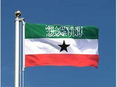Cheap Somaliland Flag 2x3 ft RoyalFlags