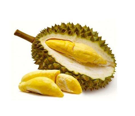 tafsir mimpi  durian togel code syair jitu