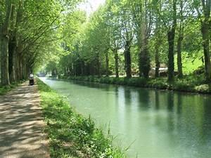Leboncoin 31 Haute Garonne : rencontre en haute garonne 31 avec le site ~ Dailycaller-alerts.com Idées de Décoration