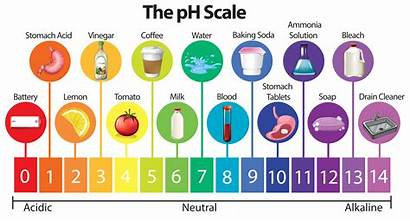 Ph Scale Vector Science System