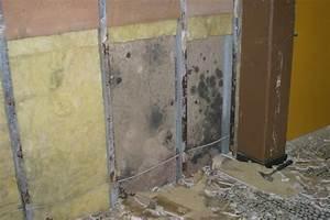 Schimmel Wand Entfernen : schimmelbeseitigung schimmel entfernen kern sohn f rstenzell ~ Lizthompson.info Haus und Dekorationen