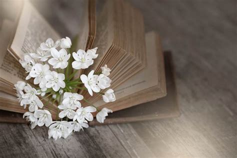 heartfelt poems  death love lives