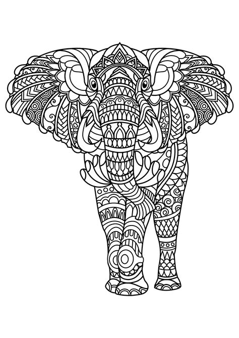 book elephant elephants adult coloring pages